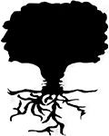 NSOUL logo small